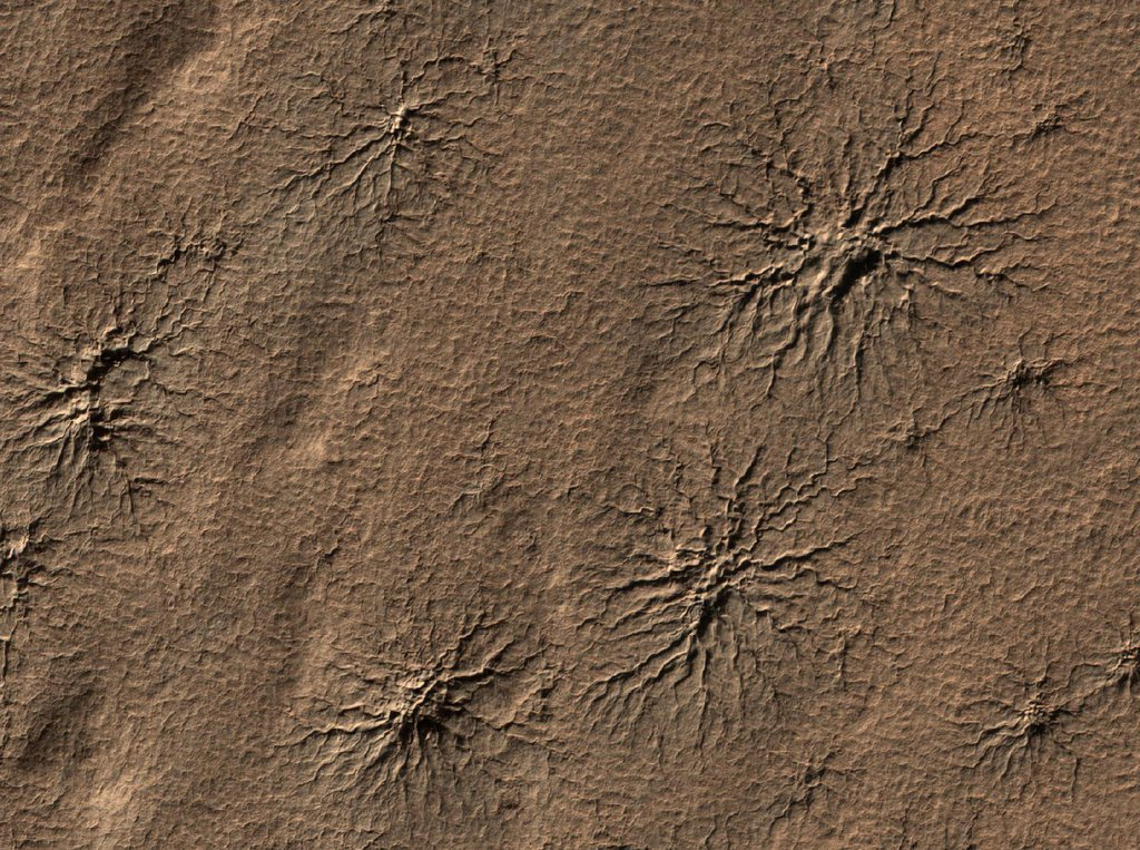 The High Resolution Imaging Science Experiment camera on NASA's Mars Reconnaissance Orbiter captured this image of spider-shaped features on Mars, carved by vaporizing dry ice.