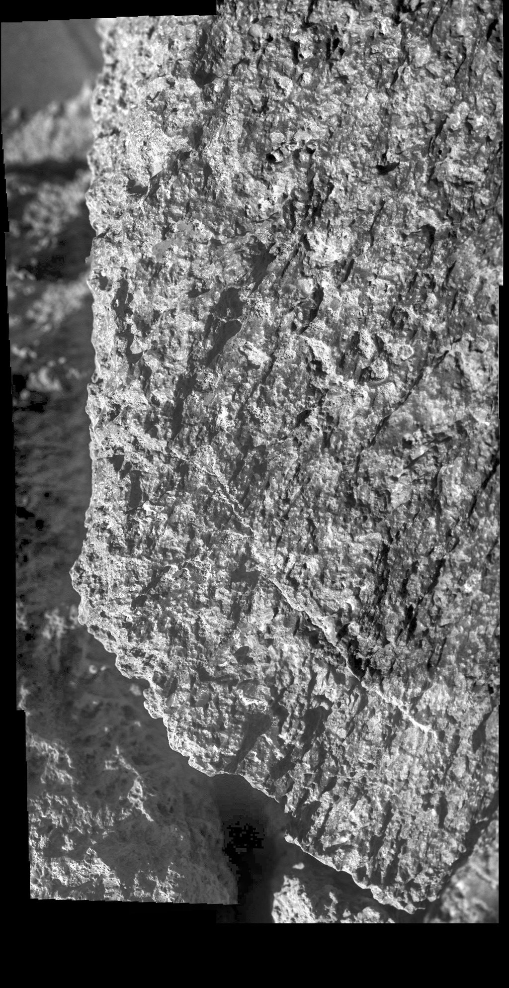 NASA's Opportunity rover captured an image of this rock nicknamed, Jornada del Muerto, while in Perseverance Valley.