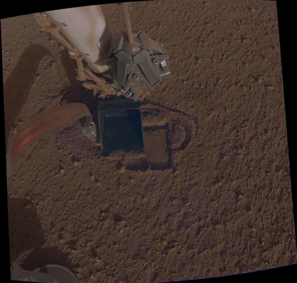 This animation shows NASA InSight's heat probe, or 'mole,' digging about a centimeter (half an inch) below the surface.