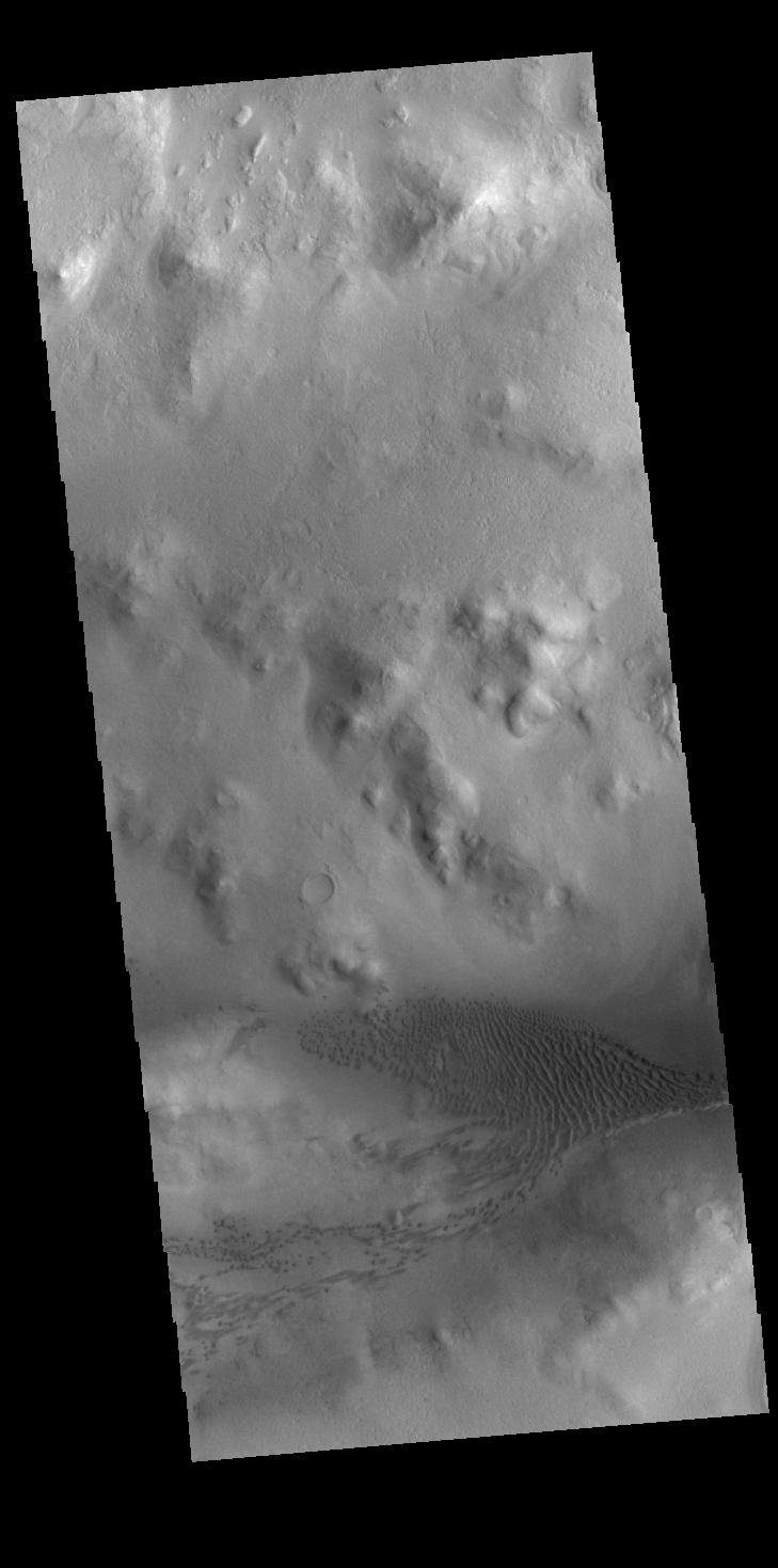 This image from NASA's Mars Odyssey shows part of the floor of Lyot Crater, including a field of dunes.