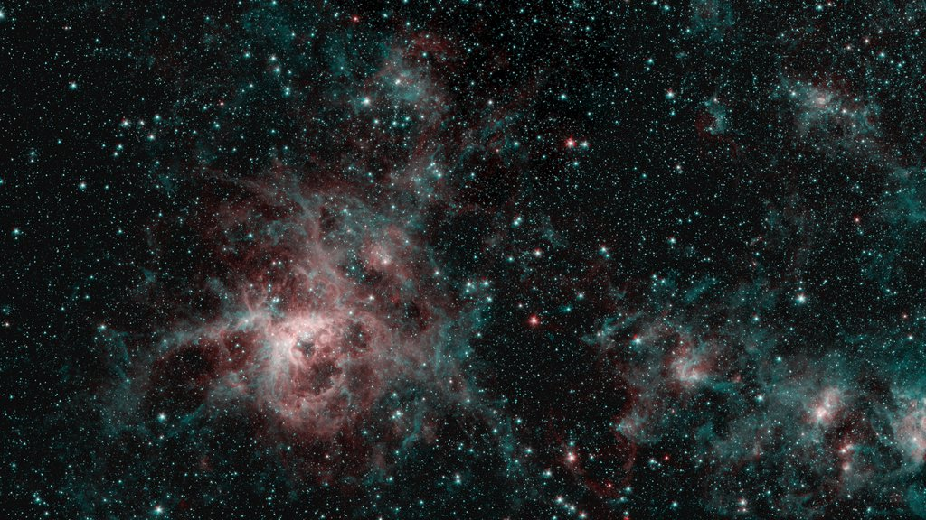 This image from NASA's Spitzer Space Telescope shows the Tarantula Nebula in two wavelengths of infrared light, each represented by a different color.