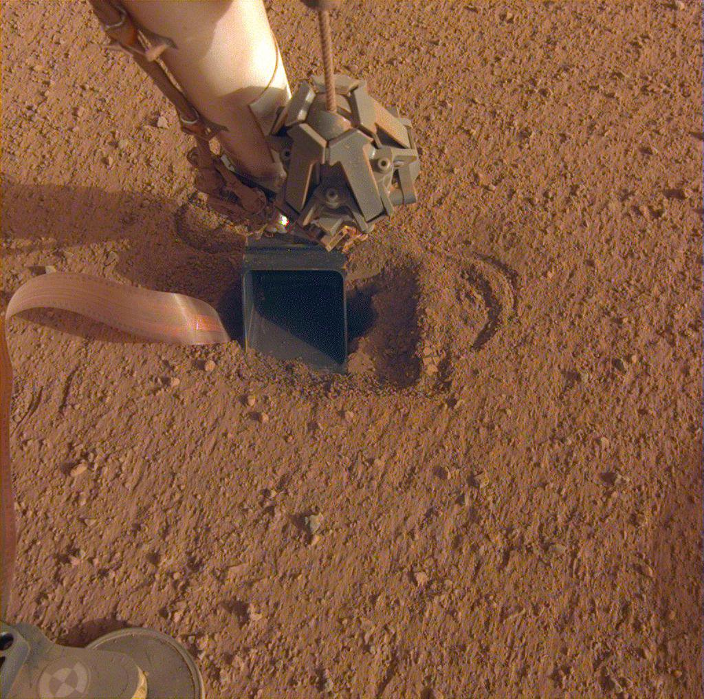 The movement of sand grains in the scoop on the end of NASA InSight's robotic arm suggests that the spacecraft's self-hammering mole had begun tapping the bottom of the scoop while hammering on June 20, 2020.
