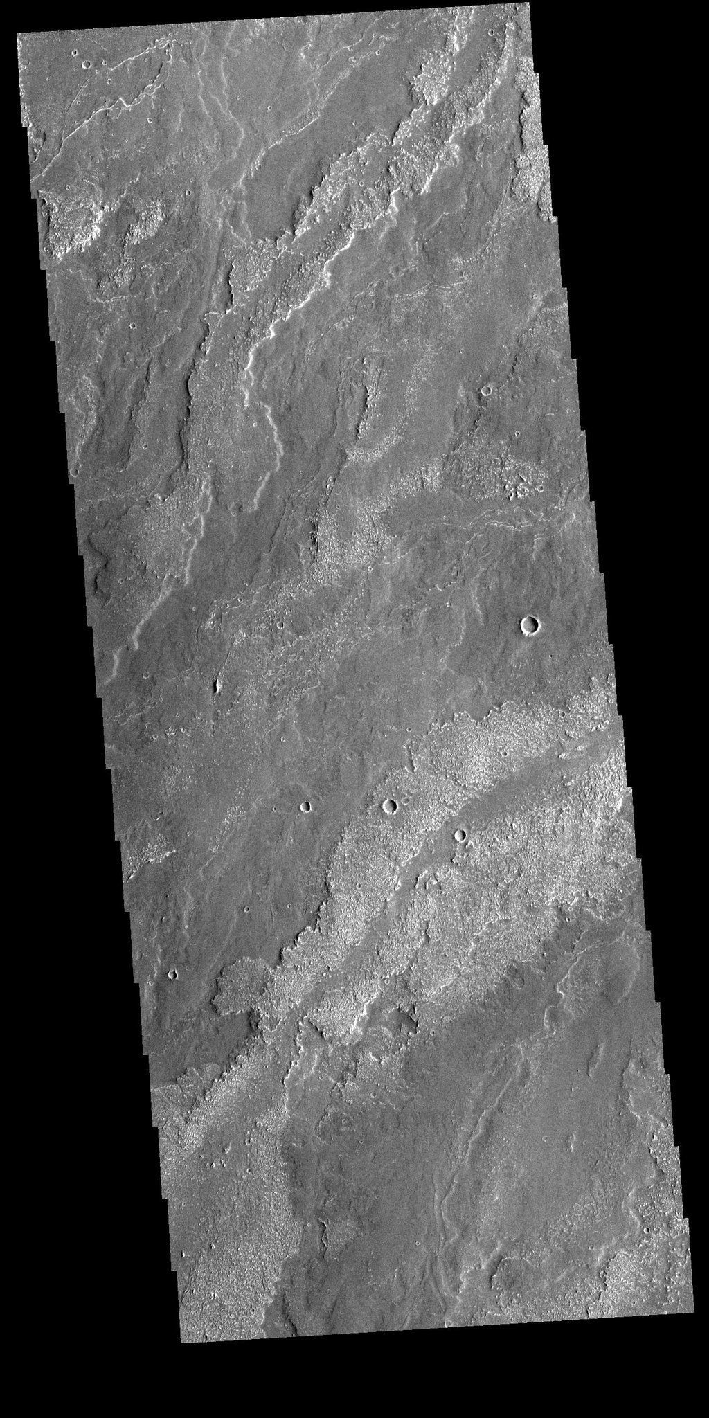 This image from NASA's Mars Odyssey shows part of the extensive lava flows that comprise Daedalia Planum.