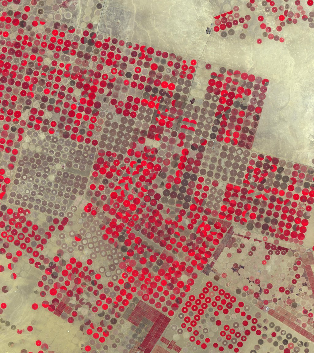 NASA's Terra spacecraft shows the Al Jowf Province in northwestern Saudi Arabia, 30 years after the area has grown from 22 center-pivot irrigated fields to thousands.