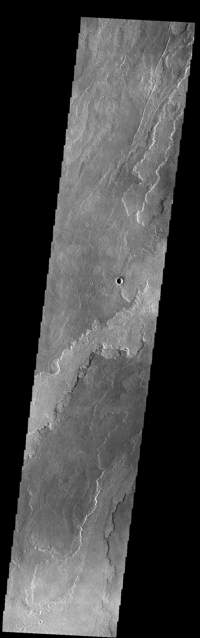 This image from NASA's Mars Odyssey shows a small portion of the immense lava flows that originated from Arsia Mons.