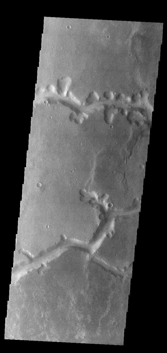 This image from NASA's Mars Odyssey shows a small section of Nirgal Valles. Located in Noachis Terra, Nirgal Valles is 610km long (379 miles).